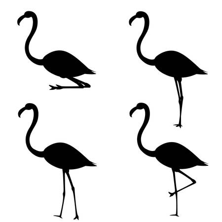 Set of silhouettes of flamingo in different poses.