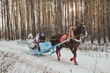 horse sleigh: Driving on sledge for New Years holidays. Stock Photo
