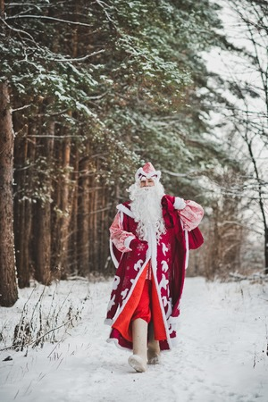 grandfather frost: The grandfather Frost bears gifts to children for new year.