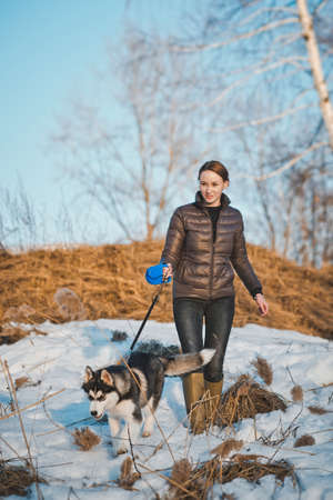 dog walker: Walk with a dog in the winter. Stock Photo