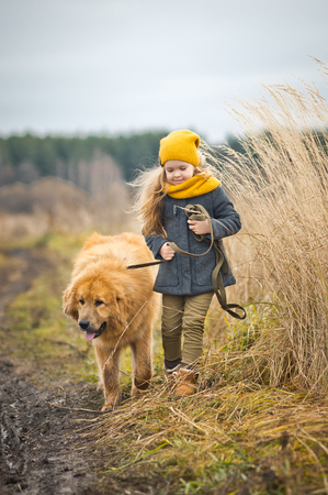 Walking baby with dog on autumn field of wheat.