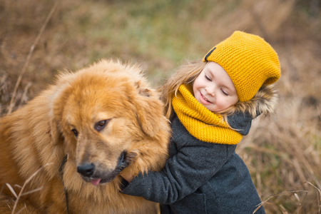 Little girl in a yellow hat and scarf, stroking the face of a huge red dog. Stock Photo