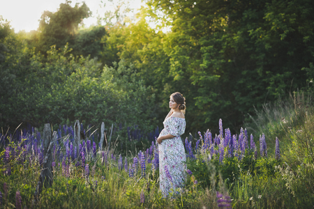 Beautiful portrait of a girl standing in the field of blooming Lupin. 写真素材