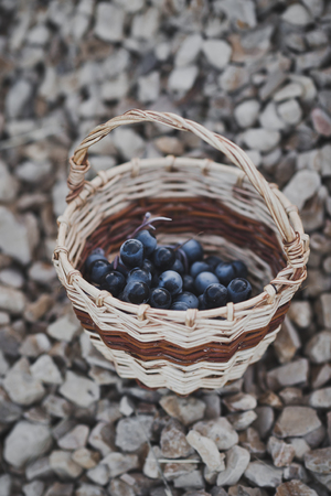 The basket is half full of words. Stockfoto
