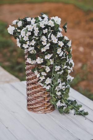 Bacopa is a common blooming bouquets in a wicker vase. Archivio Fotografico - 112103902
