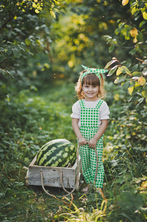 A little girl carries a huge watermelon on a cart. 스톡 콘텐츠 - 112260739