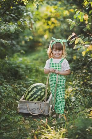 Portrait of a child with a huge watermelon in the cart. Standard-Bild - 112120835