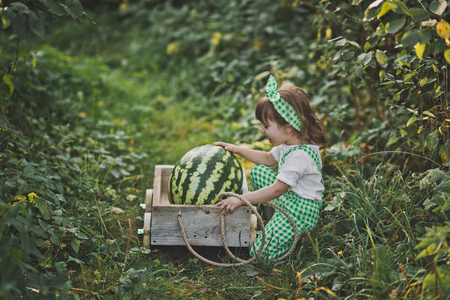 A little girl carries a huge watermelon on a cart. Фото со стока - 112120838