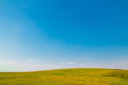 Summer landscape with clear sky. Copy space - copyspace.