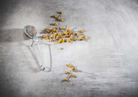 Dry chamomile tea petals - loose flowers in a infuser on gray table Top view, flat lay. Blank free space for your advertising or text. Copyspace