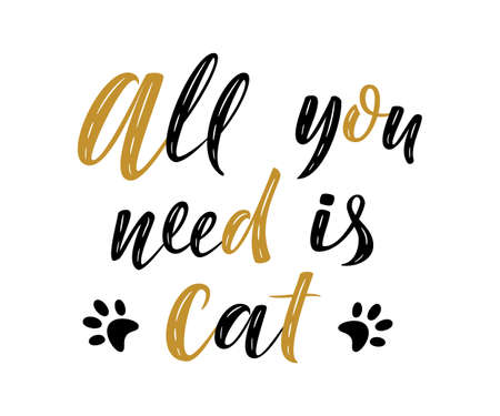 All you need is cat handwritten sign. Modern brush lettering. Cute slogan about cat. Cat lover. Textured phrase for poster design, postcard, t-shirt print or mug print. Illustration