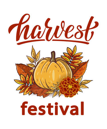 Harvest Festival hand drawn lettering text with autumn leaves and pumpkins. Rowan and oak leaves with gourds and marigold. Fall season elements for thanksgiving. Autumn harvest fest. Vector design Illustration