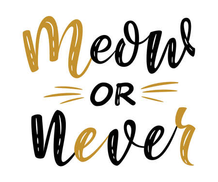 meow or never handwritten sign. Modern brush lettering. Cute slogan about cat. Cat lover. Textured phrase for poster design, postcard, t-shirt print or mug print. Vector isolated illustration