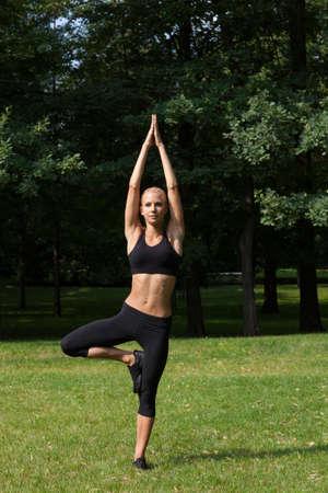Beautiful woman doing yoga exercises Stock Photo - 21088163