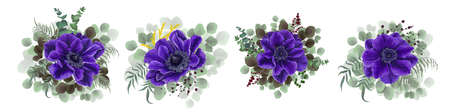 Vector set of beautiful blue anemones. Blue anemones, eucalyptus, mimosa, berries, green plants and leaves. Flowers on a white background.