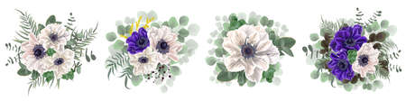 Vector set of anemone flowers. Blue and white anemones, eucalyptus, mimosa, green leaves and plants. Flowers on a white background.