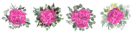 Vector set of bouquets of pink hydrangea flowers on a white background. Mimosa, eucalyptus, berries, green plants and flowers. Illustration