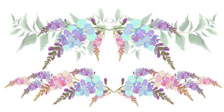 Insieme dei bordi di vettore dei fiori di glicine. Tutti gli elementi sono isolati.