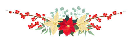 Vector Christmas border. Border of poinsettia, branches with berries, leaves. Elements for Christmas design. All elements are isolated.