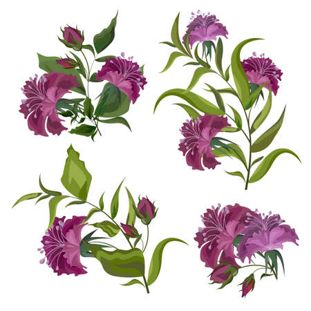 Vector fuchsia flowers. All elements are isolated.