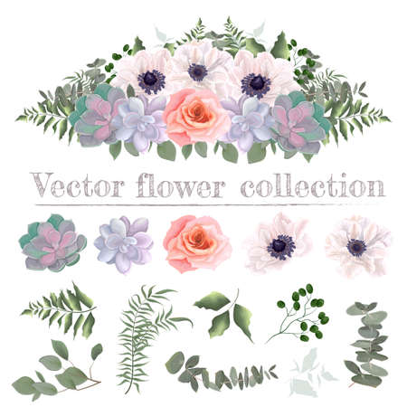 Vector flower border. Pink roses, white anemones, succulents, eucalyptus, green plants and flowers. All elements are isolated on a white background.