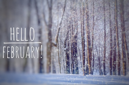 Hello February photo. The beginning of the New Year. Greeting card. Hello, February