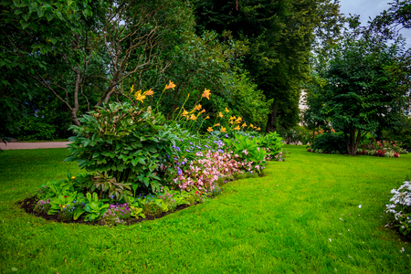 Parc verdoyant d'été. Herbe, feuillage, arbres. Parc lumineux. Fond de parc d'été Banque d'images