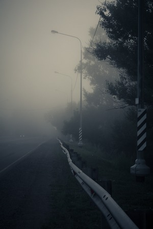 Morning fog on the road. Travel by car. Road views. Fog in the morning. Background morning fog road