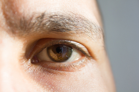 bruin oog van een man. delen van het gezicht. visie. goed zicht.