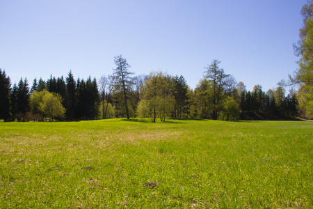 Spring Park. Aparcar en mayo. Aparcar en primavera cuando hace sol.