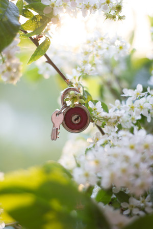 Small red lock. Castle and flowers. Property security.