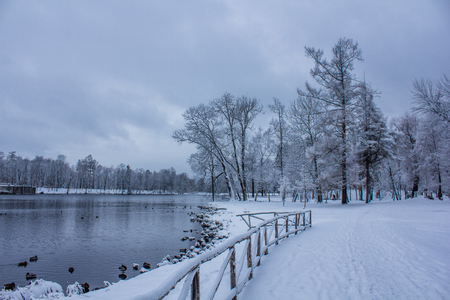 Overcast snowy evening park. It's a nasty day. Snow park. Picture winter park. Winter landscape. Winter nature Stock Photo