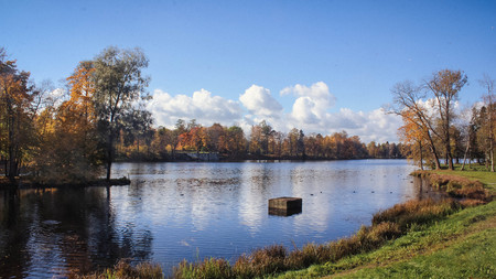 Autumn park in clear sunny weather. Park of Russia. Golden autumn Stock Photo