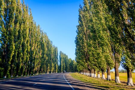 Russian asphalt roads. Highway. Road trip. The car goes on the road. Background asphalt road. Landscapes of Russia