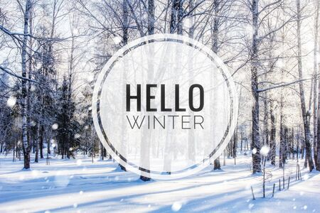 Banner Hello winter . The picture of Hello winter. New season. Nature. Winter landscape. Landscape with text.Welcome card