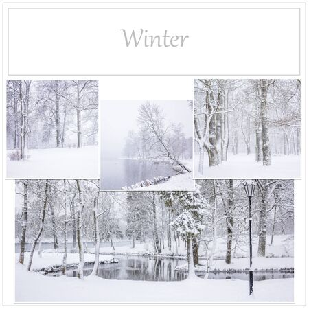 Selection of photos of the winter Park Stock Photo