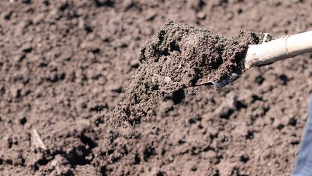 Digging of beds in the spring. Sowing. Preparing the soil for sowing. Home garden. Self-isolation in the village. Household. An article about soil preparation in spring for sowing. Fertile land