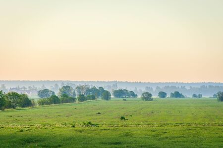 Summer field landscape in the morning at dawn with fog . The morning haze. nature of Russia. Summer landscape. Morning light. Copy spase