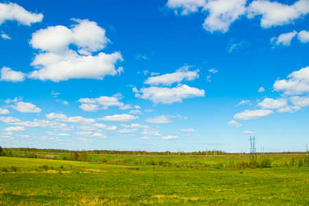 Summer Sunny landscape in the field. Beautiful summer landscape. Photos in the daytime in sunlight. nature of Russia. Green grass and blue sky.