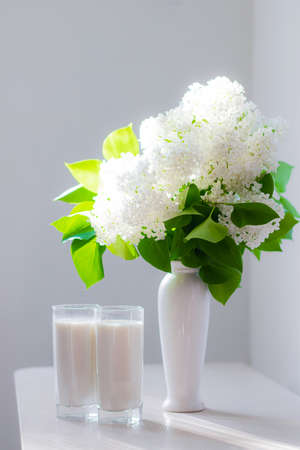 Milk and white lilac . Glasses of milk and white flowers in a vase. Cow's milk. Drink. Memories from childhood. Article about the benefits of milk. 版權商用圖片