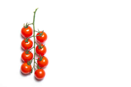 Cherry tomatoes branch isolated on white background . Red tomato. Tomatoes on a branch. Isolated background. Article about vegetables. Decoration. Copy space.