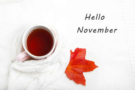 A Cup of tea in a knitted sweater . Hello November. Postcard with text. Hot tea. Autumn. Autumn mood. A knitted item. Tea in a Cup. Copy space