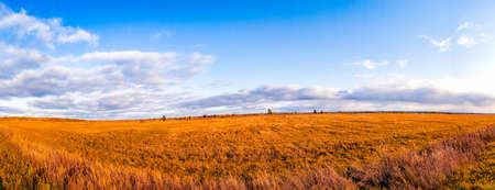 Panorama of the autumn field . Beautiful scenery. Autumn. Panorama. space of Russia. journey.