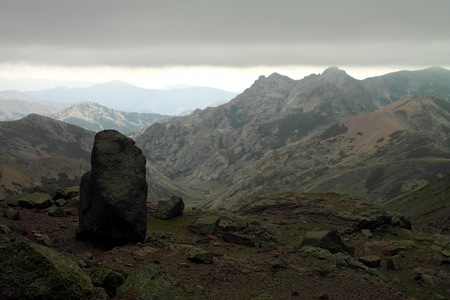 wold: Big boulder standing on the wold of Corsica mountains