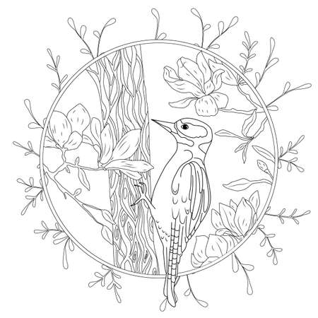 stylized cartoon woodpecker on tree branch. Hand drawn sketch for adult antistress coloring page