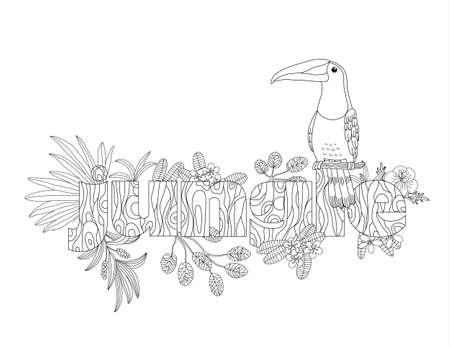 Vecteur de coloration d'un oiseau toucan adulte Banque d'images - 84140023