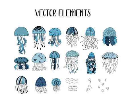 Vector set of jellyfish style drawn by hand