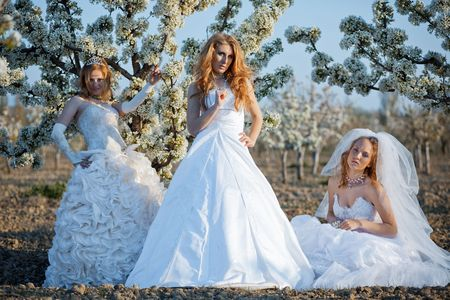 Three happy beautiful brides together Stock Photo - 4827365