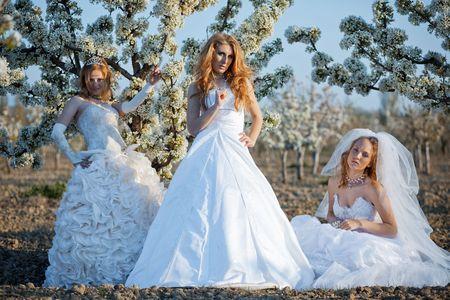 Three happy beautiful brides together Stock Photo - 4827365