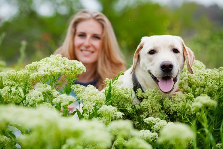 trusting: Girl with her dog posing in spring grass